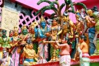 Шри-Ланка 2014.01