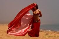 Восточный танец с шалью
